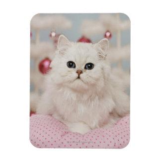 Persian cat sitting on pink pillow rectangular photo magnet
