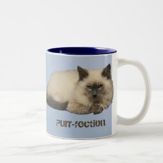 Persian Cat Two-Tone Coffee Mug