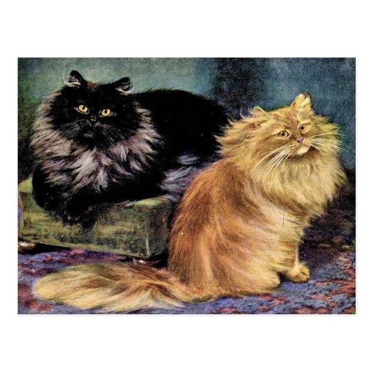 Persian Cats, Smoke and Orange Postcard