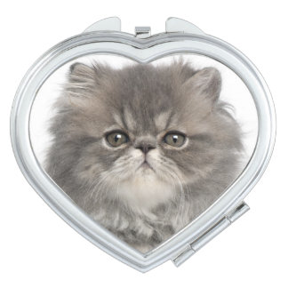 Persian Kitten (2 months old) sitting Compact Mirrors