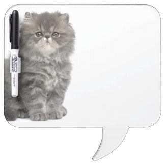 Persian Kitten (2 months old) sitting Dry Erase Board