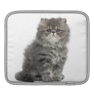 Persian Kitten (2 months old) sitting iPad Sleeve