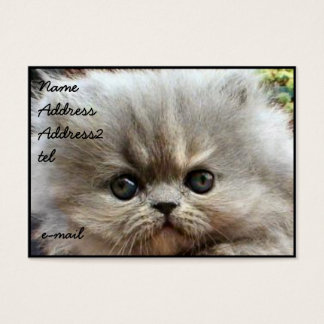 Persian kitten business card Large