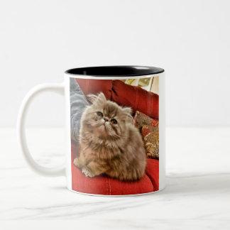 Persian Kitty Mug