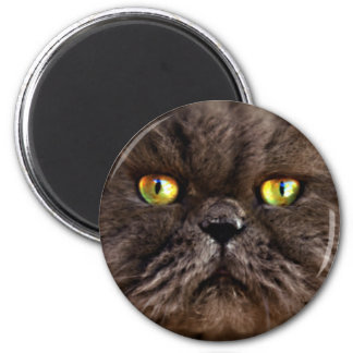 Persian Pussy 6 Cm Round Magnet