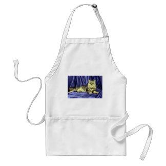 Persian, silver tabby apron