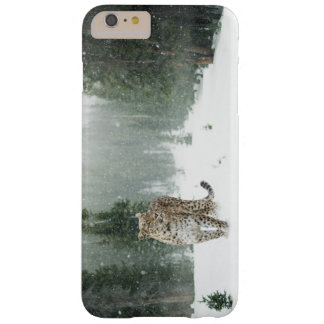 Persian Snow Leopard Barely There iPhone 6 Plus Case