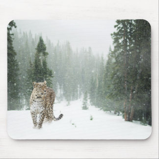 Persian Snow Leopard Mouse Pad