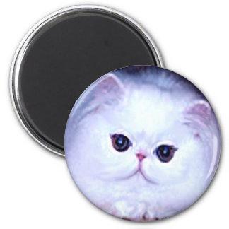 Persian White Cat Kitten Kitty Fridge Magnets