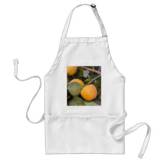 persimmons in autumn standard apron