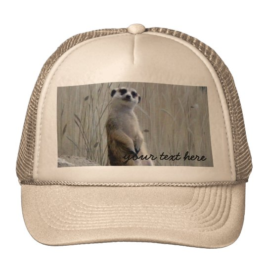 Personalise this cute meerkat trucker hat