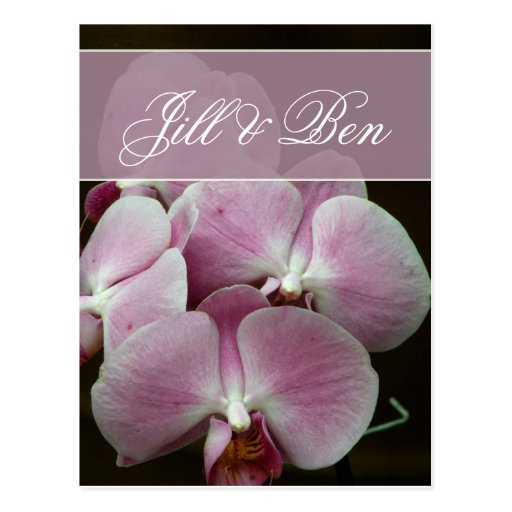 Personalise your own orchid design postcard
