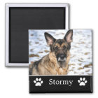 Personalised Black Pet Photo Magnet