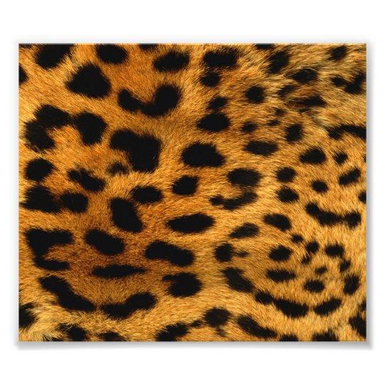 Personalised Cheetah Photo Print