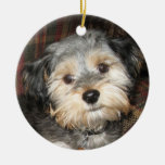 Personalised Dog Photo Frame - DOUBLE-SIDED Ornaments