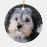 Personalised Dog Photo Frame - DOUBLE-SIDED Round Ceramic Decoration