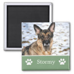 Personalised  Green Pet Photo Magnet