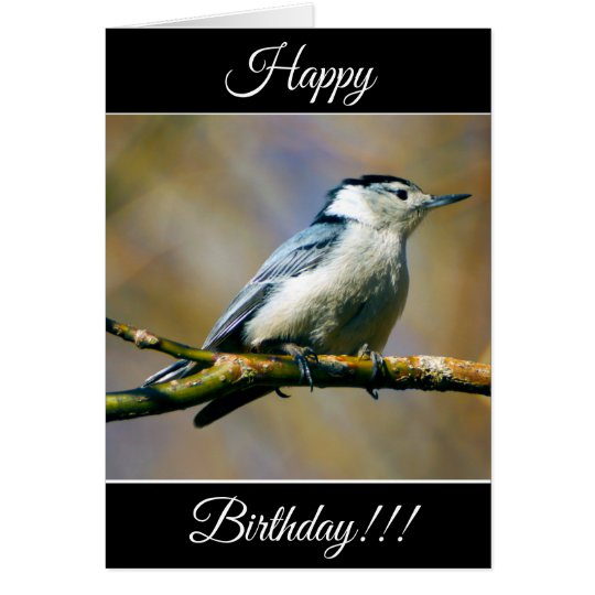 Personalised Happy Birthday Nuthatch Card