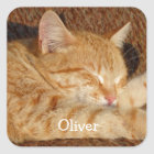 Personalised pet's photo square sticker