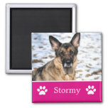 Personalised Pink Pet Photo Magnet