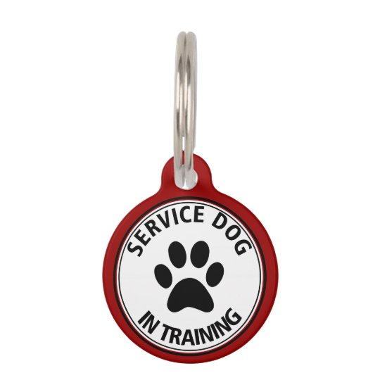 Personalised Service Dog In Training Red Pet Tag