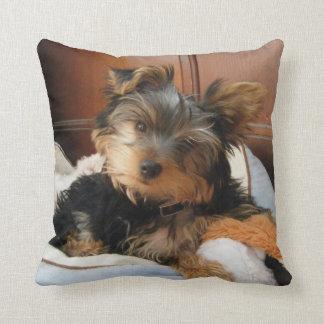 Personality Plus Yorkie Throw Pillow