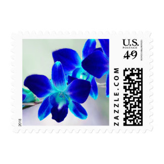 Personalizable Blue & Purple Orchid Postage Stamps