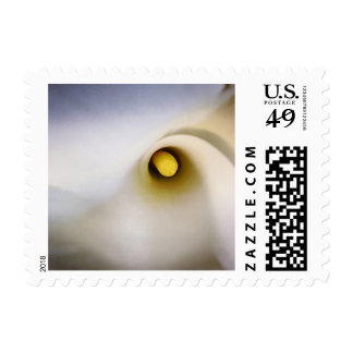 Personalizable Calla Lily Flower Postage Stamps