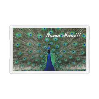 Personalize Name Strutting Male Peacock