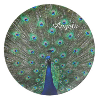 Personalize Name Strutting Male Peacock Plates