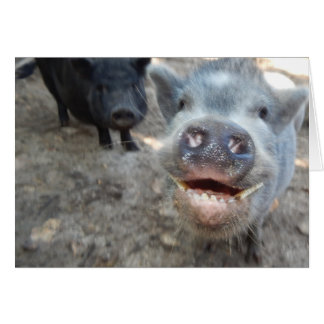 Personalize Smiling Happy Mini Pigs Card