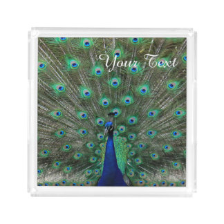 Personalize Strutting Male Peacock