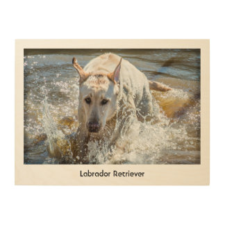 Personalize:  Yellow Labrador Pet Photography Wood Print