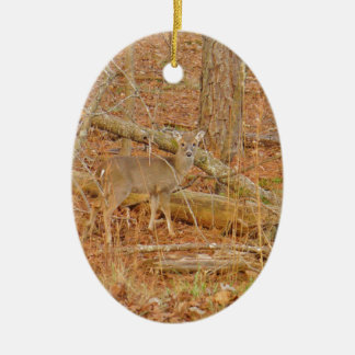 personalized Baby Deer's First  winter Christmas Ornament