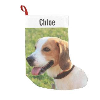 Personalized Beagle Dog Photo and Dog Name Small Christmas Stocking