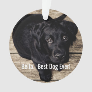 Personalized Black Lab Dog Photo and Dog Name