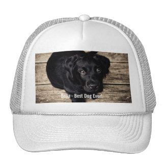 Personalized Black Lab Dog Photo and Dog Name Cap