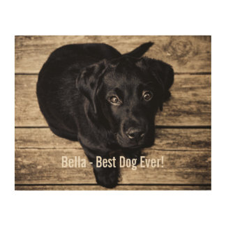 Personalized Black Lab Dog Photo and Dog Name Wood Canvas
