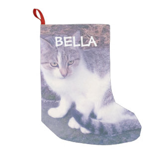 Personalized cat or dog pet photo custom Holiday