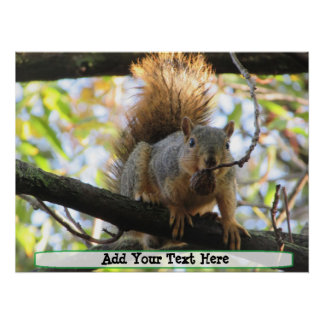 Personalized Cute Squirrel Humor Poster