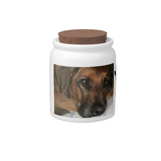Personalized Dog Treat Jar Candy Dishes