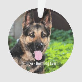 Personalized German Shepherd Dog Photo, Dog Name