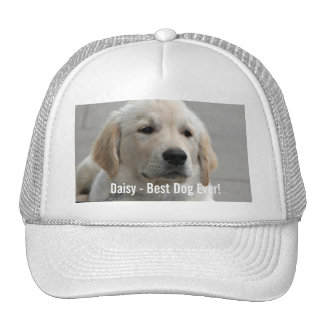Personalized Golden Retriever Dog Photo and Name Cap
