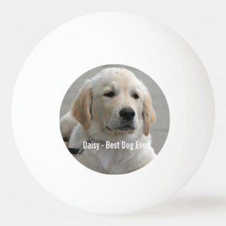 Personalized Golden Retriever Dog Photo and Name Ping Pong Ball