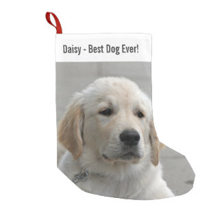 Personalized Golden Retriever Dog Photo and Name Small Christmas Stocking