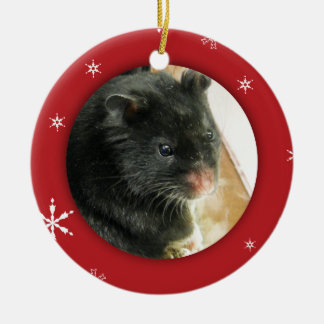 Personalized Hamster/Pet Photo Holiday Christmas Ornament