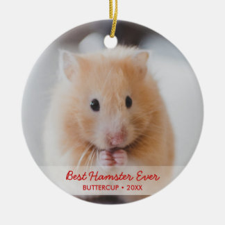 Personalized Hamster Pet Photo & Name Christmas Christmas Ornament