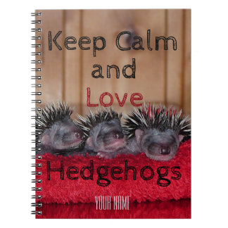 Personalized || Keep calm and love hedgehogs Spiral Note Books