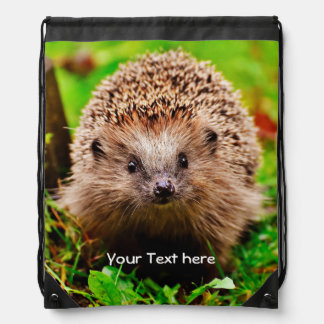 Personalized Little Hedgehog in the Forest Drawstring Bag