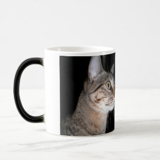 Personalized mug Felinas Messages